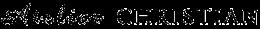 logo_duzenew